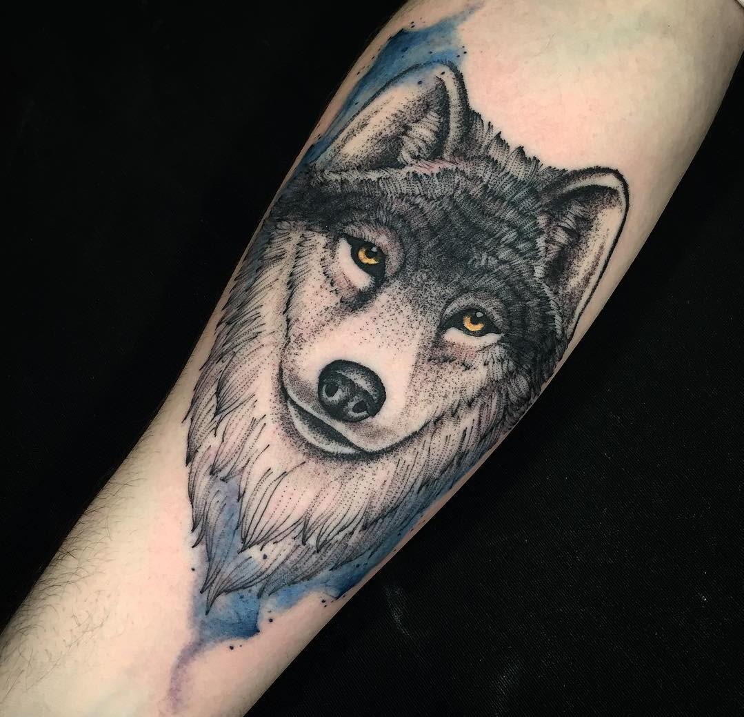 Tatuagem De Lobo Significado E As 75 Ideias Mais Lindas Do Instagram