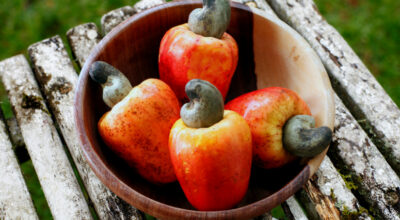 Caju: conheça 9 benefícios surpreendentes desse alimento para a saúde