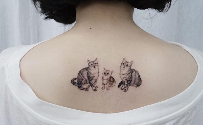Tatuagens femininas com gatos