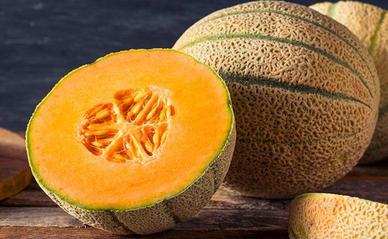 Resultado de imagem para melão cantaloupe
