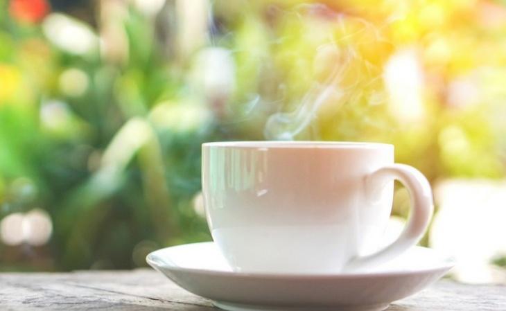 Resultado de imagem para chá