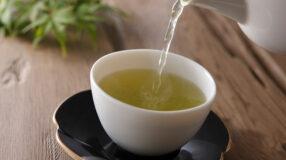 10 receitas de chá para acabar com a infecção urinária