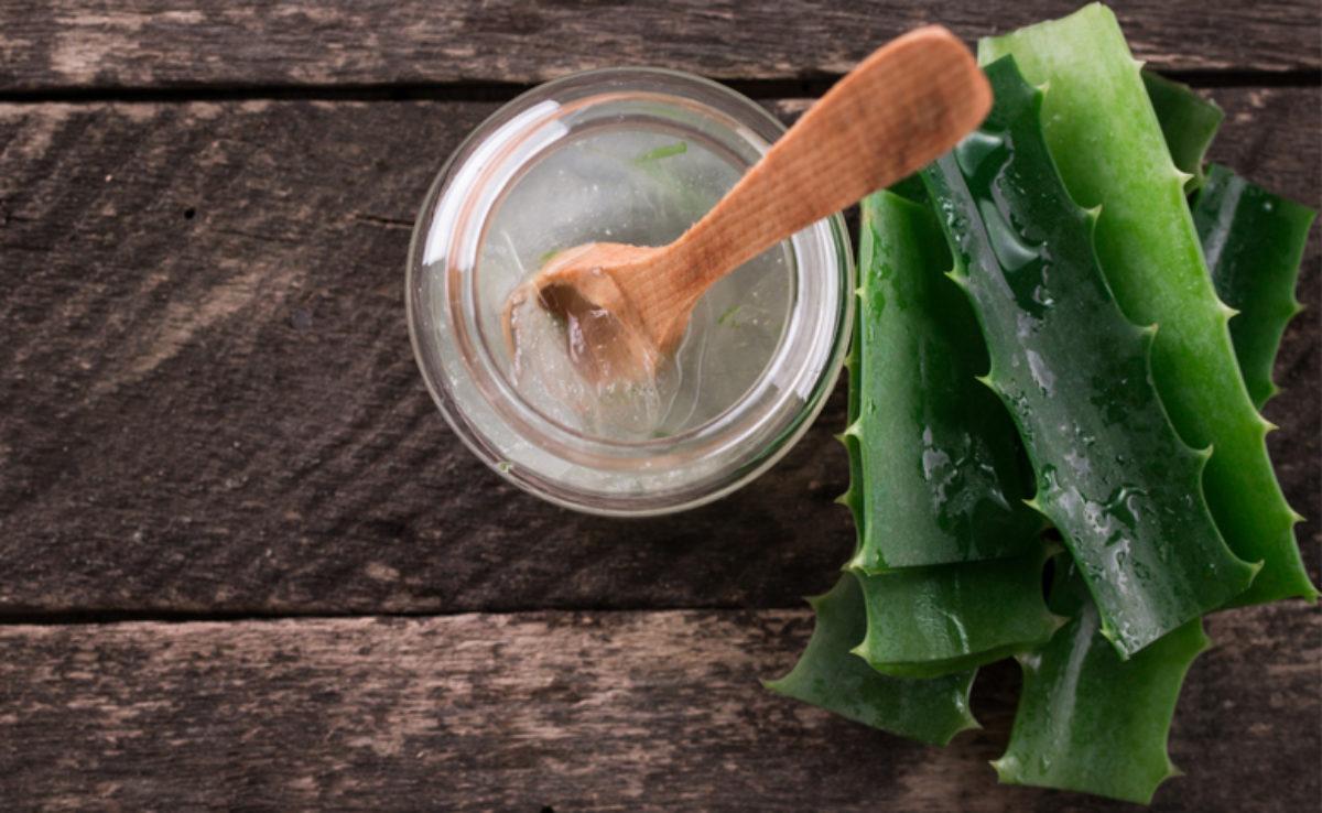 Hidratação com babosa: 10 receitas milagrosas para você fazer em casa
