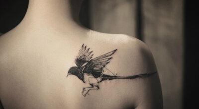 Tatuagem de pássaros: 80 ideias para você se inspirar e tatuar
