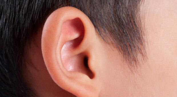 Teste da orelhinha: entenda como é feito e a sua importância