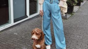 Calça de cintura alta: 60 sugestões de looks arrasadores
