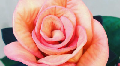 Flores de EVA: 80 dicas de como decorar, inspirações e DIY