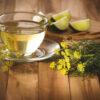 Chá de erva-doce: conheça os benefícios diários que ele traz ao seu corpo
