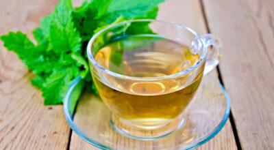 Erva-cidreira: para que serve e quais são suas vantagens ao organismo