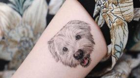 Tatuagem de cachorro: 80 ideias para eternizar o amor pelo seu bichinho