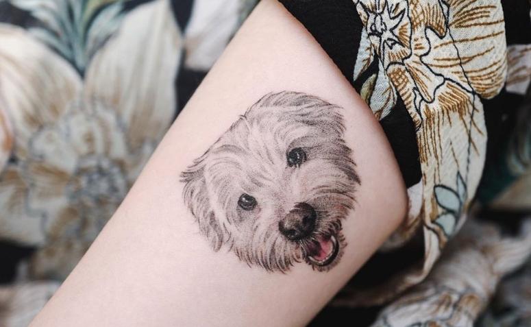 Tatuagem De Cachorro 80 Ideias Para Eternizar O Amor Pelo Seu