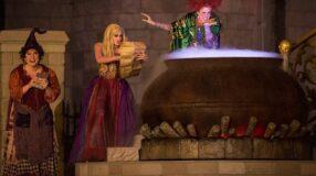 Filmes de bruxas: 30 títulos que vão te enfeitiçar