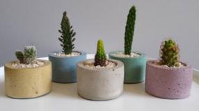 Vaso de cimento: 35 inspirações e passo a passo para fazer o seu