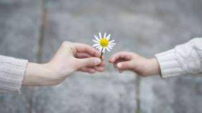 Responsabilidade afetiva: a importância para a saúde de suas relações