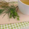 Benefícios e dicas para aproveitar ao máximo o chá de endro