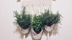 60 ideias de macramê para vasos para deixar as suas plantas charmosas