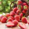 Como conservar morangos: 5 formas práticas de manter o frescor da fruta